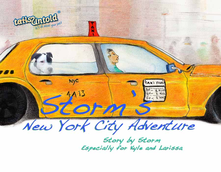 Storm front cover 2_db