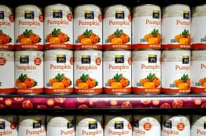 pumpking for blog